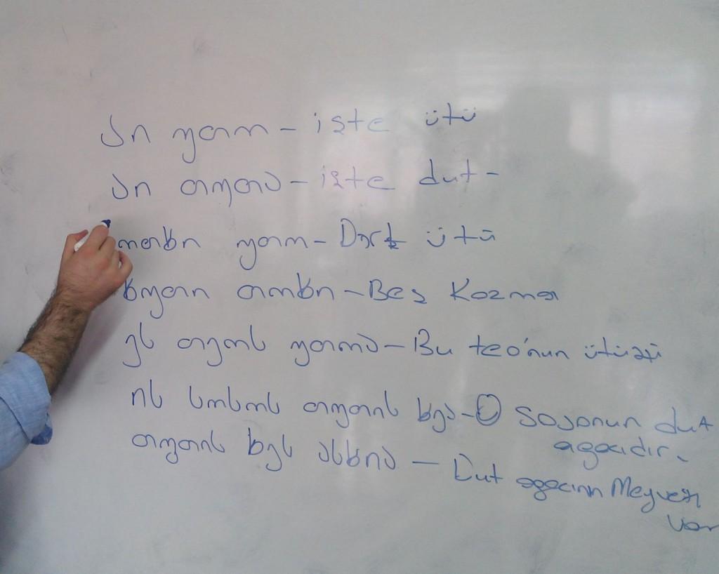 ქართულის შესწავლა თურქეთში/gurcu.org-ის ფოტო