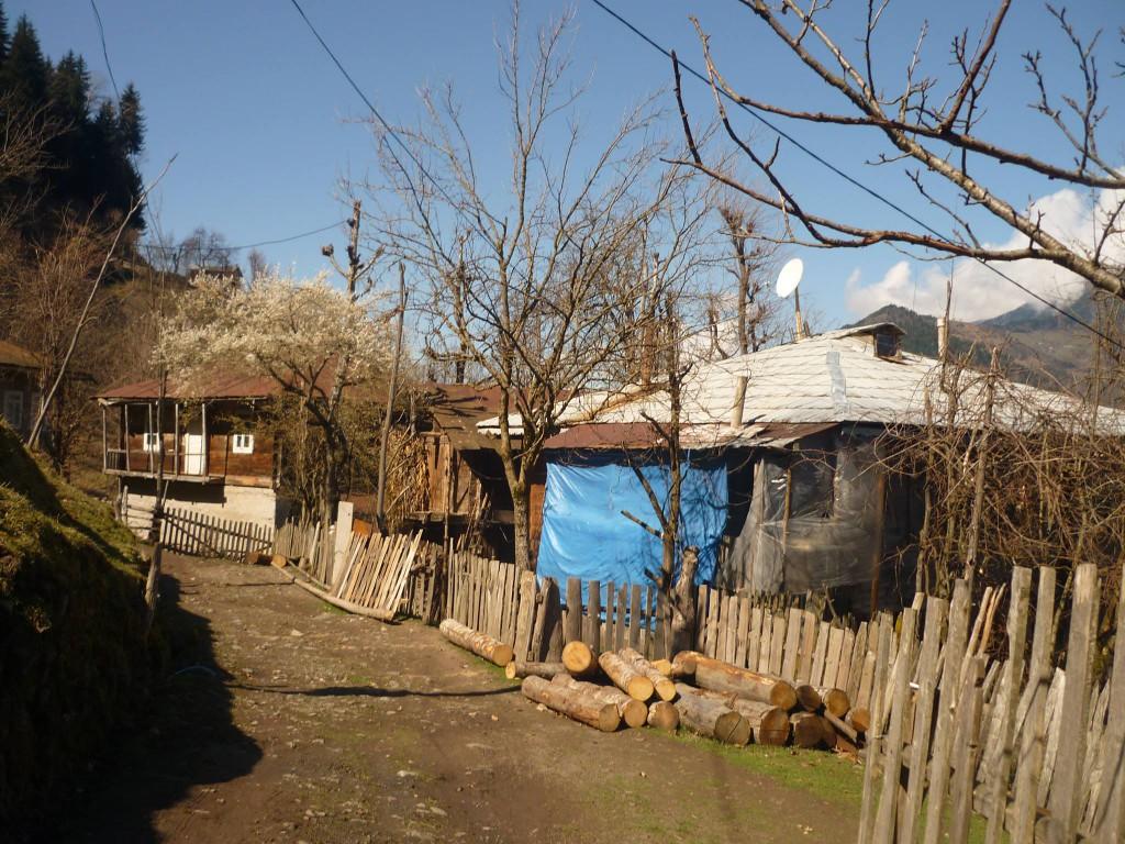 სოფელი ჩაო
