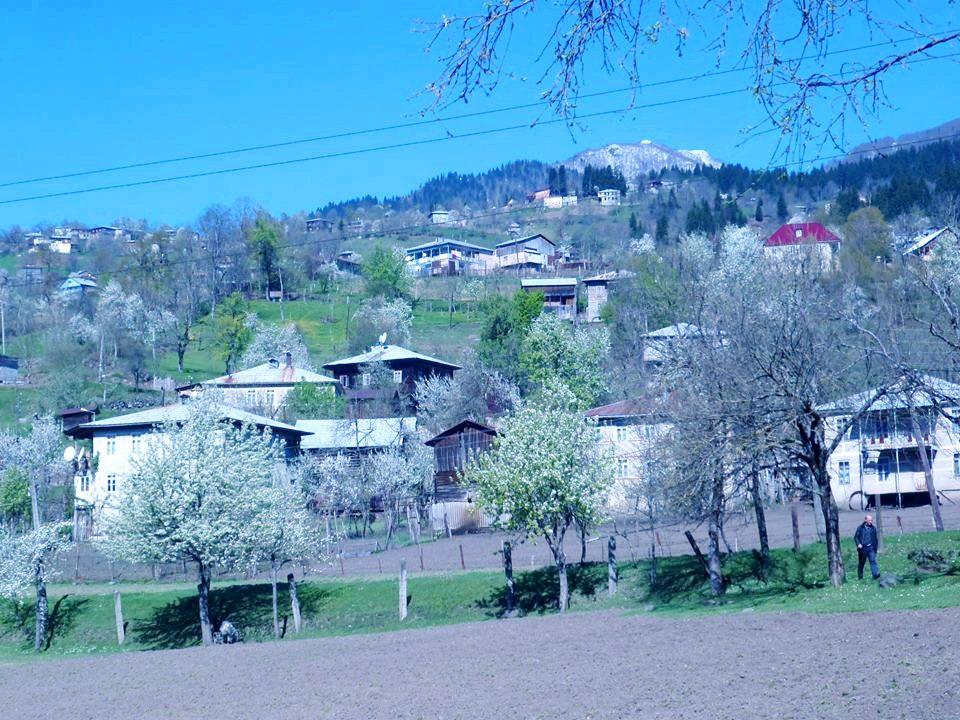 სოფელი აჭარაში