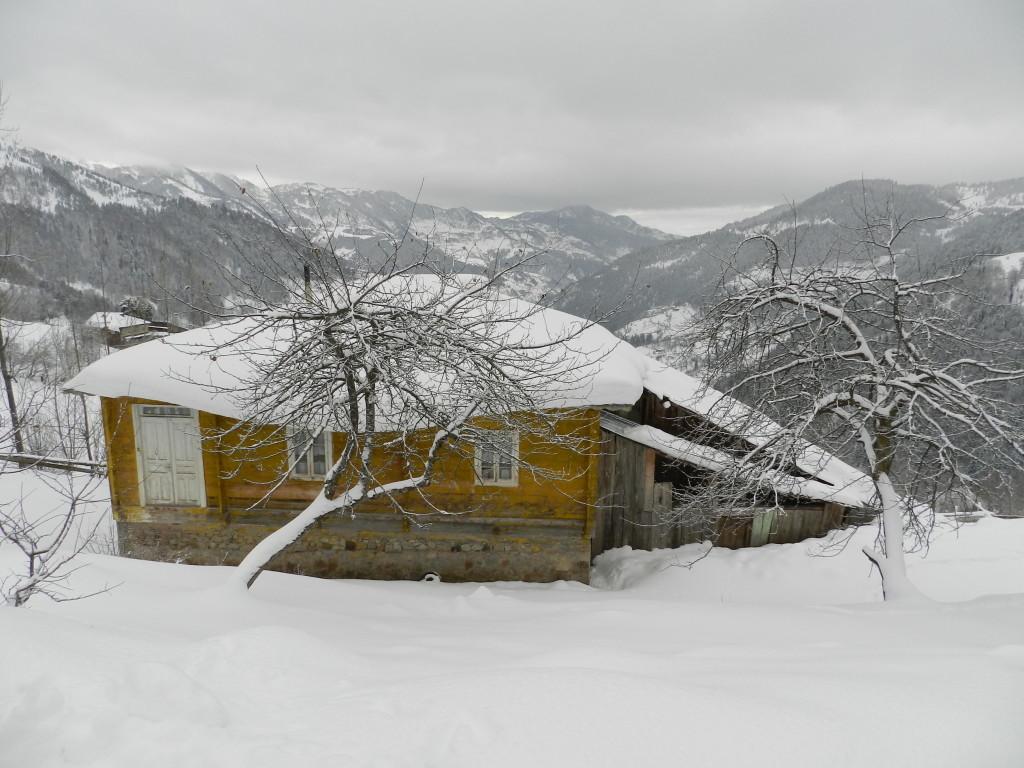 საოჯახო სასტუმრო სახლი სოფელ დანისპარაულში