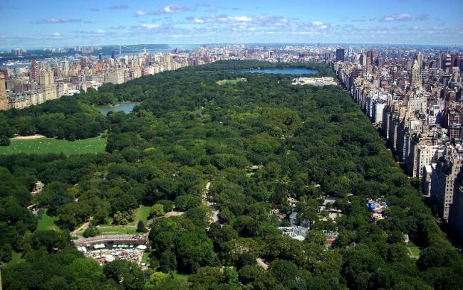 ცენტრალური პარკი ნიუ იორკში