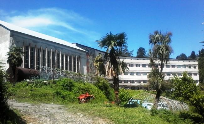 ყოფილი აგრარული უნივერსიტეტის შენობა. მწვანე კონცხი.