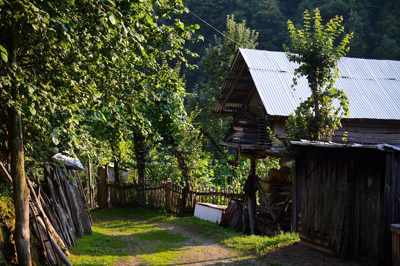 სოფელი მეძიბნა. ნალია.