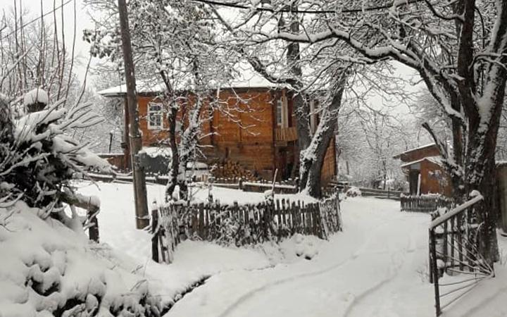 თოვლი შუახევში   ფოტო